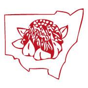 NSWFAA-Logo
